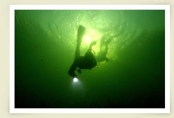 Photo of diver underwater